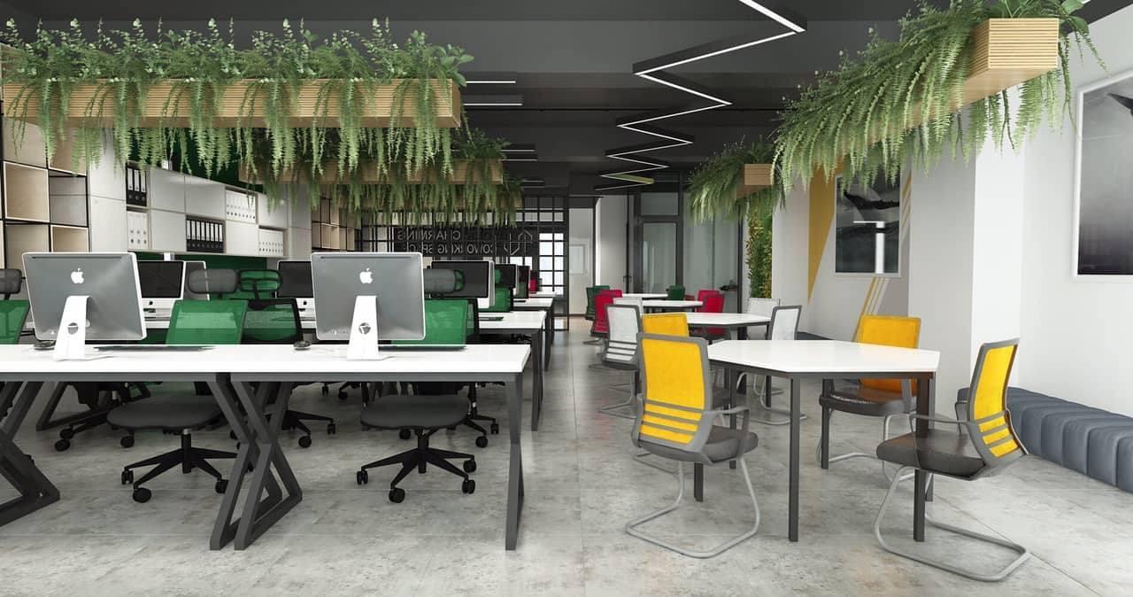 Văn phòng xanh mang lại cảm giác thư giãn, dễ chịu